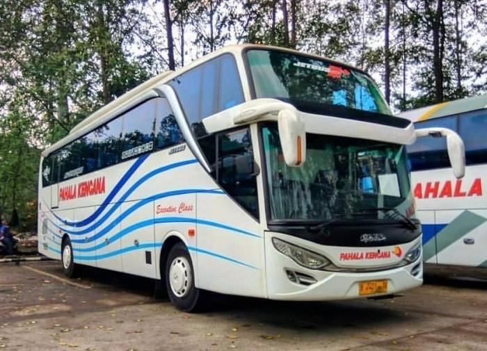 Tiket Bus Jakarta Semarang Pahala Kencana